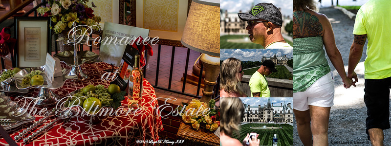 Jim and Denise Romance at The Biltmore Estate 96x38 72dpi