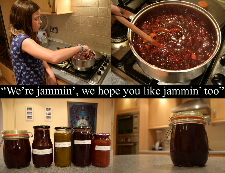 25.08.14 - The Fruits of Our Labours<br /> <br /> It was a miserable wet Bank Holiday Monday in the UK, so the twins and I spent most of the day jam making. Amy is stirring a big pan full of damson chutney, which was my personal favourite last year. Apologies to Bob Marley for misusing his lyrics  :)