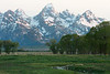 Grand Tetons from Mormon Row