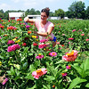 Marah Schmitz of Columbia Station cuts flowers for a bouquet at Nagel Farms on Detroit Road in Avon on July 22. STEVE MANHEIM/CHRONICLE