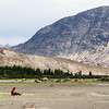 Near Sumoor, Nubra Valley