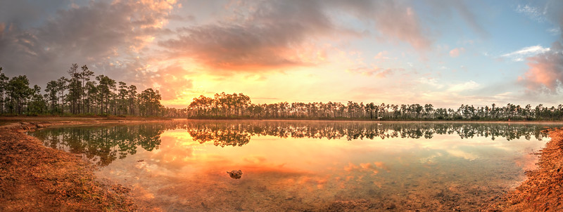 Sunrise @ Pine Glades Lake (panorama)<br /> Long Pine Key, Everglades National Park