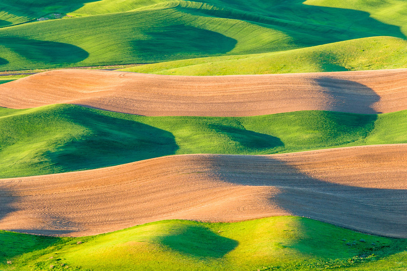 Rolling Hills at Steptoe Butte 6