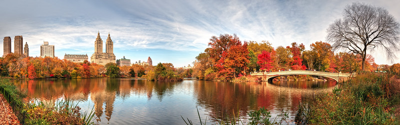 panorama image, Central Park<br /> NYC
