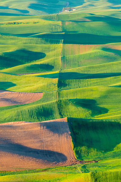 Rolling Hills at Steptoe Butte 5