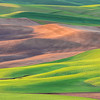 Rolling Hills at Steptoe Butte 3