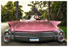 """""""Pink Eldorado"""" wedding image.<br /> <br /> Leica S2P, CS-35/2.5 Lens, Composite and retouching done in PS using Plug-ins for effects."""