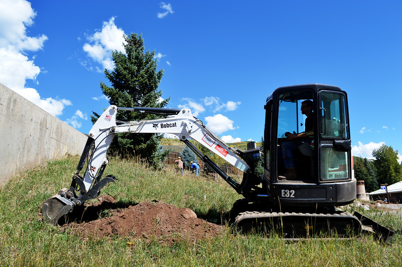 Digging a Hole for New Trees