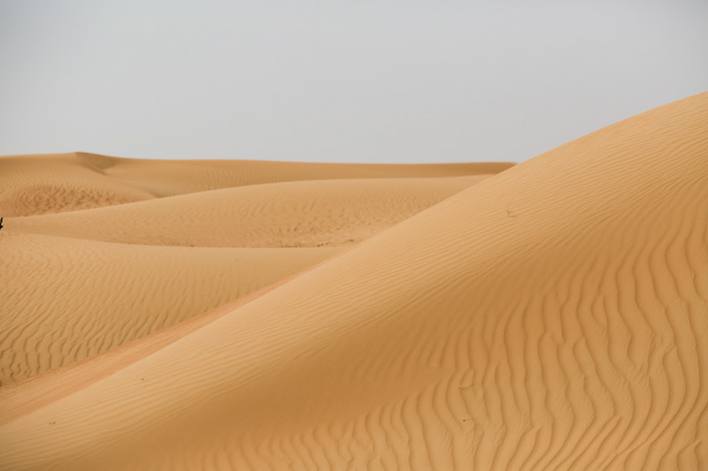 A sand dune outside of Dubai