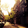 Afternoon Sunlight on a Greenwich Village Street - New York City
