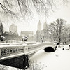 <h2>New York Winter -  Central Park Snow </h2> - By Vivienne Gucwa<br><br>  There is something <br><br>  undeniably magical that occurs<br><br>  as the snow falls <br><br>  swirling and twirling in the air until <br><br>  it hits the ground heavy with the weight of a thousand promises:<br><br>  exultations and dreams held close to the earth<br><br>  in the stillness between wintry pauses<br><br>  like a snowglobe resting between giddy shakes of joy.<br><br>  ----<br><br>   Bow Bridge is one of Central Park's most iconic structures. It was built between 1859 and 1862 and is shaped like an archer's bow.  This particular image was taken during a snowstorm in Central Park, New York City. Bow Bridge sits covered by a beautiful layer of freshly fallen snow as the buildings that line Central Park West sit in the distance just past the snow-laden trees. <br><br>  ----<br><br>