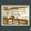 [Interior of Frank Mills' Drug Store, Carlyle, around 1912]