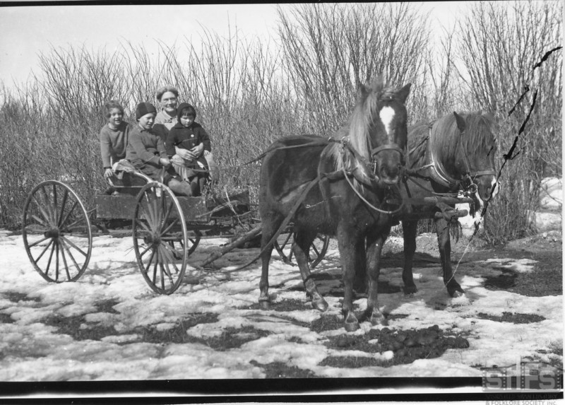 [Donald and Sandy pulling a buggy, c. 1929]