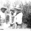[Beekeeping in Cypress Hills, 1921]