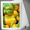 Green and Yellow Peppers PRO118