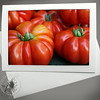 Ripe Heirloom Tomatoes PRO141