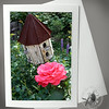 Birdhouse and Rose FLW008