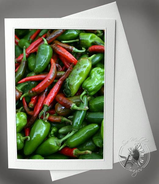 Red and Green Hot Peppers PRO137