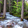 Sprague Creek, Glacier National Park