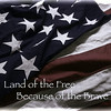 Land of Free<br /> Because of the Brave