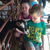 Hanna, 7, and Eric, 6, both from LaGrange pet a goat at the fair.