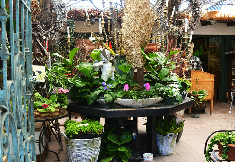 Flower Shop in Old Town in San Diego CA 2
