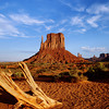 Nobody, North America, USA, Arizona and Utah, Mitten and Bleached wood, Monument Valley