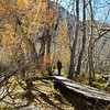 Walking at Convict Lake Near Mammoth Lakes California