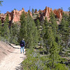 Walking in Bryce Canyon National Park in Utah 200
