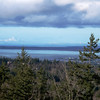 Bellingham Bay from the Ridge Trail