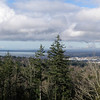 Bellingham from the Ridge Trail
