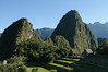 Another view of Wayna Picchu with the resident llamas walking around below.