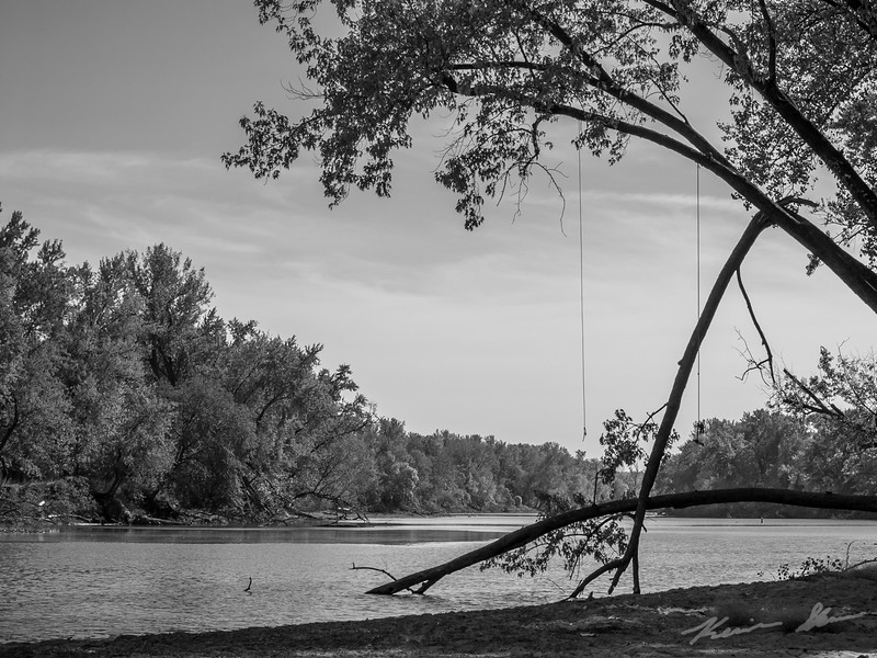 Rope swings hang over the river as fall sets in