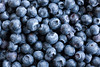 Close Up of Blueberries, full frame