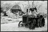 Scene from Red Oak II