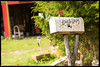 Lowell and Rose  Davis' Mailbox at Red Oak II