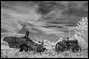 Grim Reaper Lowell Davis Sculpture