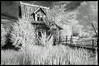 Otis Cabin at Red Oak II view I
