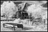 Otis Cabin at Red Oak II view 2