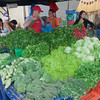 SAN JOSE, COSTA RICA - AUGUST 31: Market Vendors selling vegetables on farmer's market in San Jose, Costa Rica on August 31, 2008. This is a traditional way of selling agricultural products.