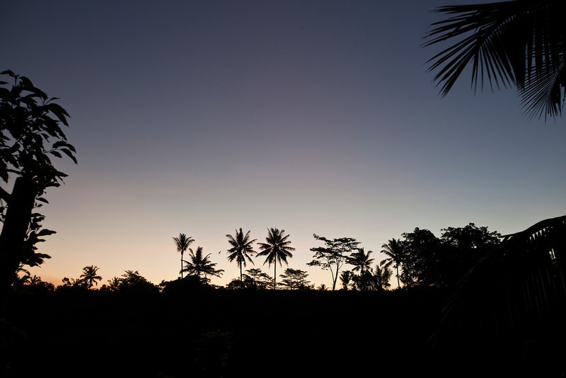 Sunset Silhouette, Ubud
