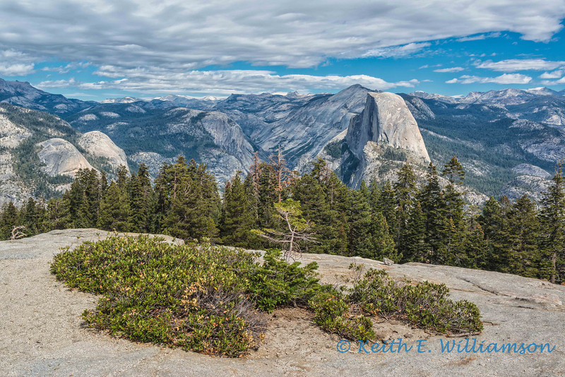Half Dome from Sentinel Dome, Yosemite NP