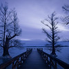 20140124Reelfoot004-Edit