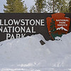 Zephyr Adventures. February 19, 2014. West Entrance, Yellowstone National Park.