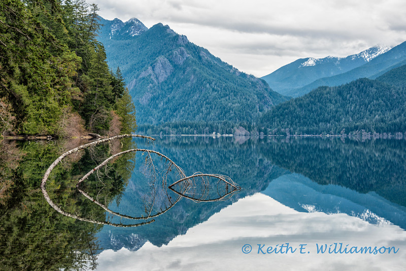 Lake Crescent, reflection 7