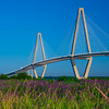 Arthur Ravenel Jr. Bridge, Purple Flowers, Morning LIght, Charleston, SC