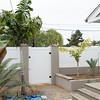 Caryota no and a cycas hybrid in new planter inside the new fence/wall combo.