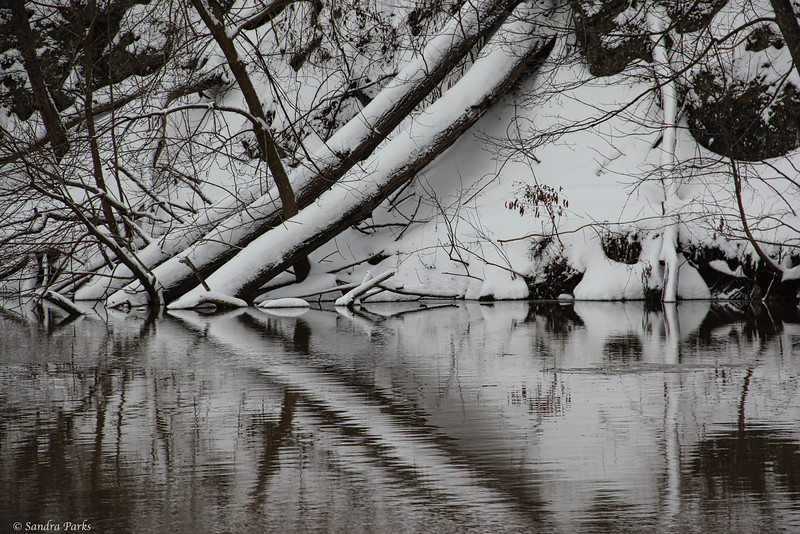 3-5-15: North River, sepia colored after a heavy rain and snow