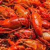 steamed crawfish