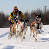2011 Limited North American Sled Dog Race - Fairbanks - Alaska